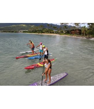 Surf/SUP Lesson - NO Rental Equipment