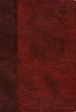 STUDY BIBLE, Trutone, Burgundy/Red, Timeless Design