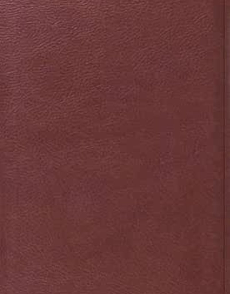 VALUE THINLINE BIBLE,  TruTone Burgundy