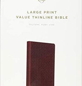 LARGE PRINT VALUE THINLINE BIBLE, TruTone Ruby Vine Design