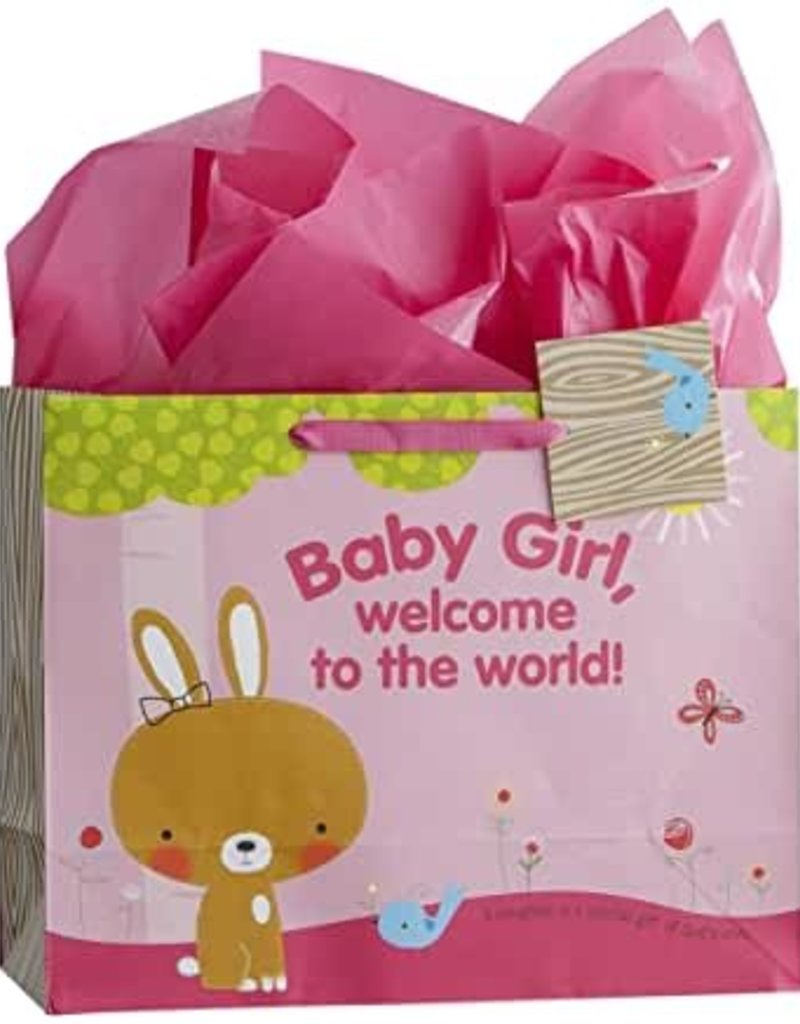 GIFT BAG BABY GIRL SPECIALTY 8000