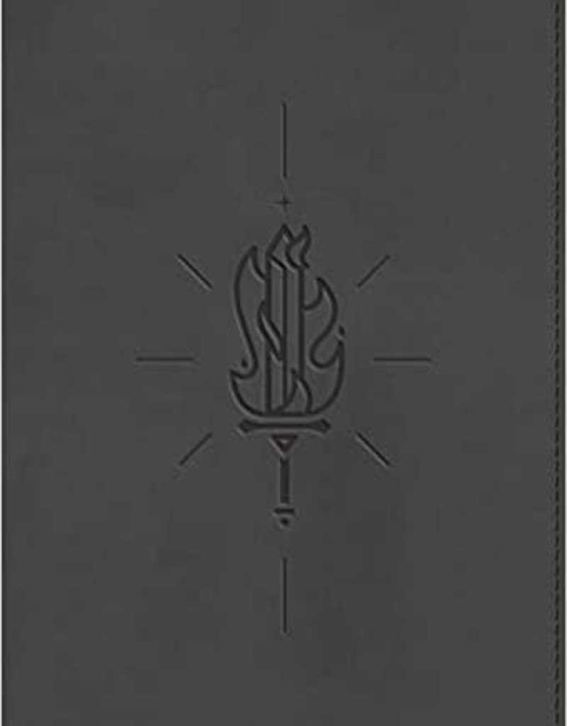 ESV Kid's Bible, Compact (TruTone, Sword of the Spirit)
