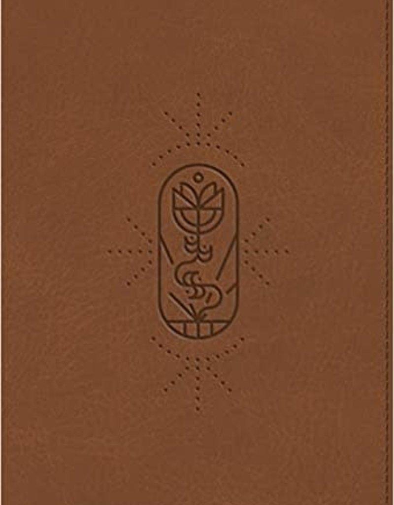 ESV Kid's Bible, Compact (TruTone, The True Vine)