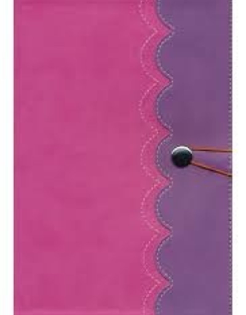 NIrV, Adventure Bible for Early Readers, Leathersoft, Pink/Purple, Full Color