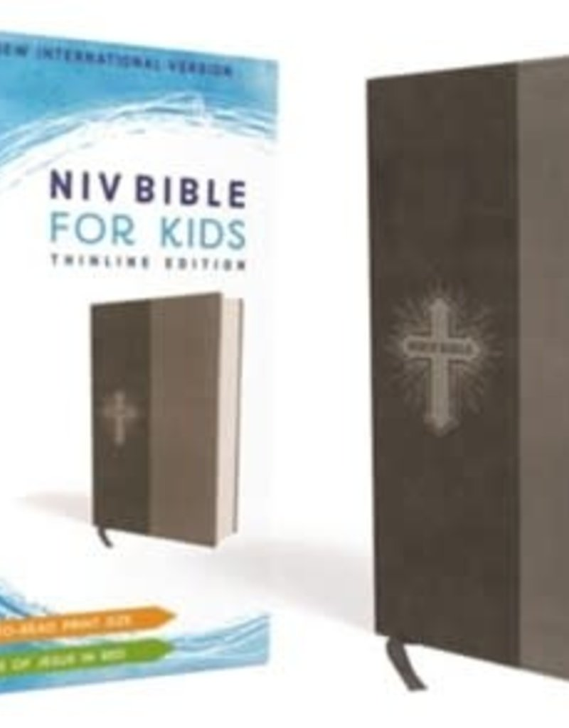 NIV Bible for Kids, Imitiation Leather, Gray