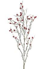 Pick/Spray Snowy Berry Branches