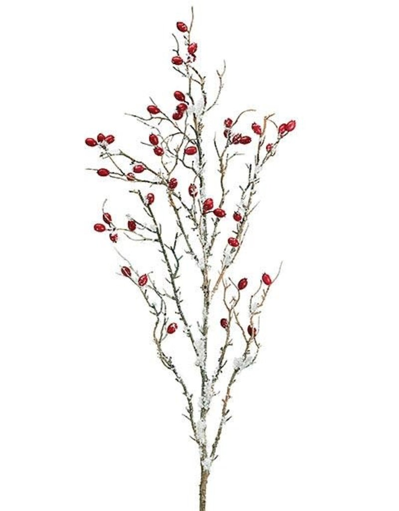 Pick/Spray Snowy Berry Branches
