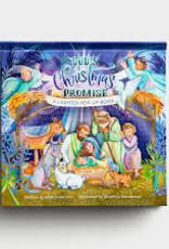 God's Christmas Promise (light up)