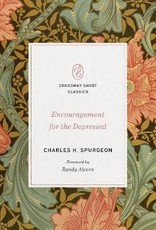 Encouragement for the Depressed
