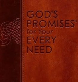 GODS PROMISES FOR YOUR EVERY NEED NJKV
