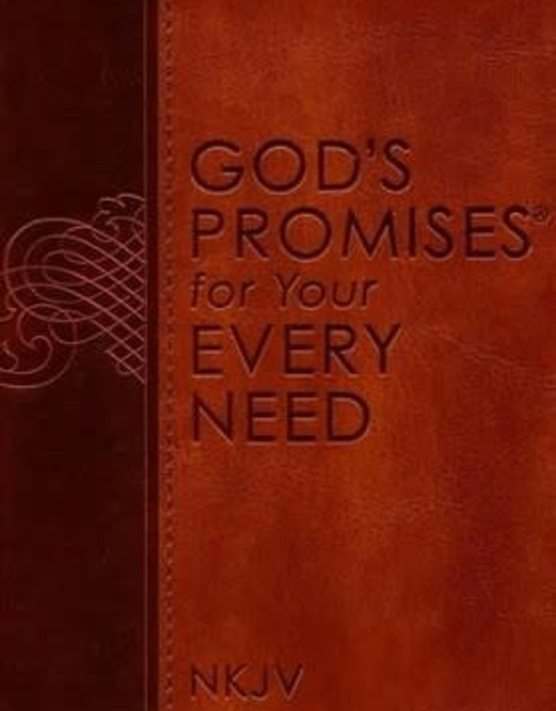 GODS PROMISES FOR YOUR EVERY NEED NJKV