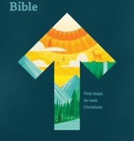 New Believers Bible SC