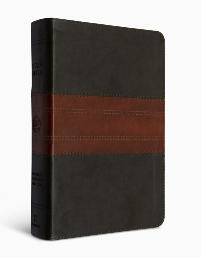 ESV Large-Print Personal-Size Bible--forest/tan with trail design