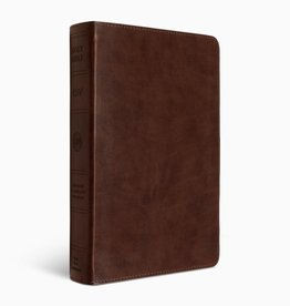 LARGE PRINT PERSONAL SIZE BIBLE chestnut