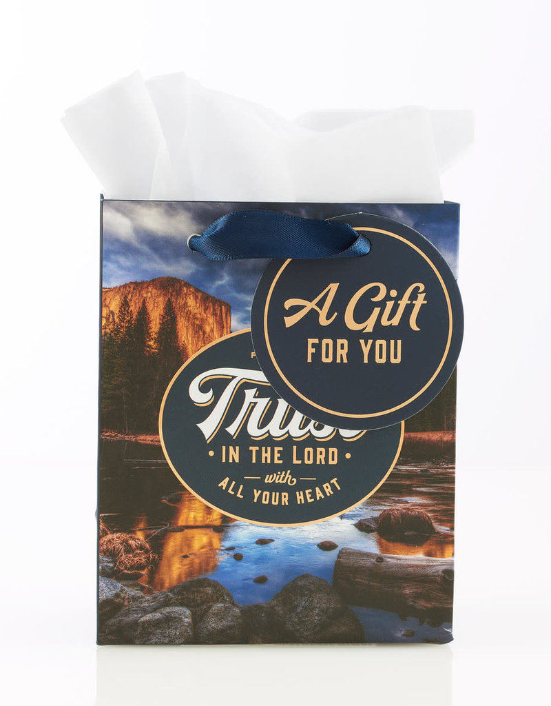 Gift Bag-Trust In The Lord w/Tag & Tissue-Extra Small