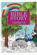 BIBLE STORY COLORING FUN