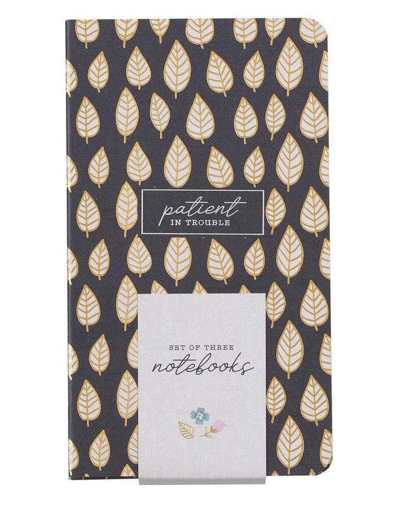 Joyful, Persistent, Patient Small Notebook Set