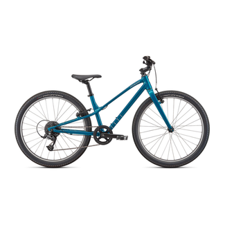 SPECIALIZED Jett 24 Gloss Teal Tint Flake Silver