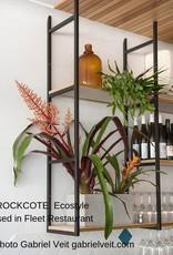 Rockcote ROCKCOTE Ecostyle Low Sheen