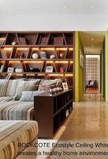 Rockcote ROCKCOTE Ecostyle Ceiling