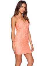 Greylin Stasia Floral Lace Dress