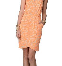 Greylin Lourdes Dress