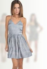 Greylin Betsy Dress