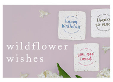 petite wildflower wishes