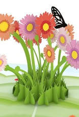 Lovepop Easter Daisy Patch