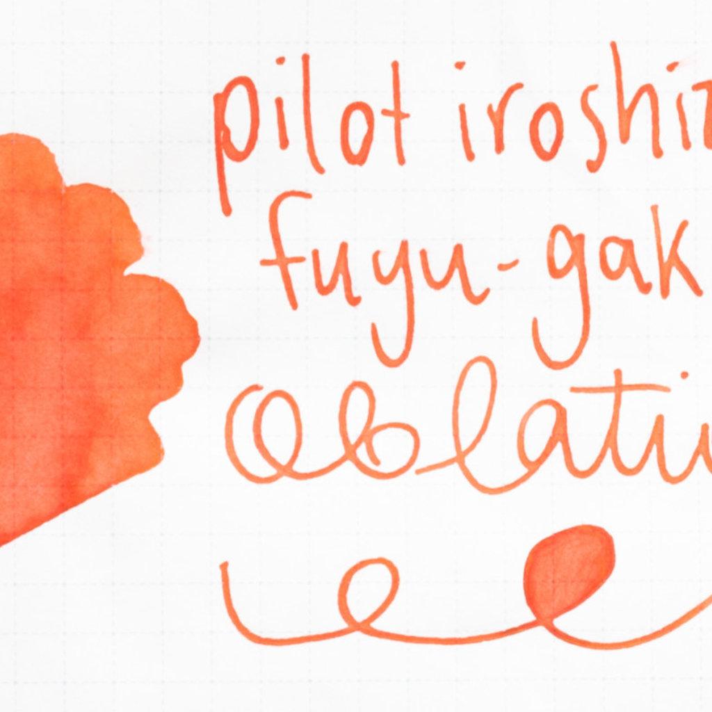 Pilot Iroshizuku Ink Fuyu-gaki