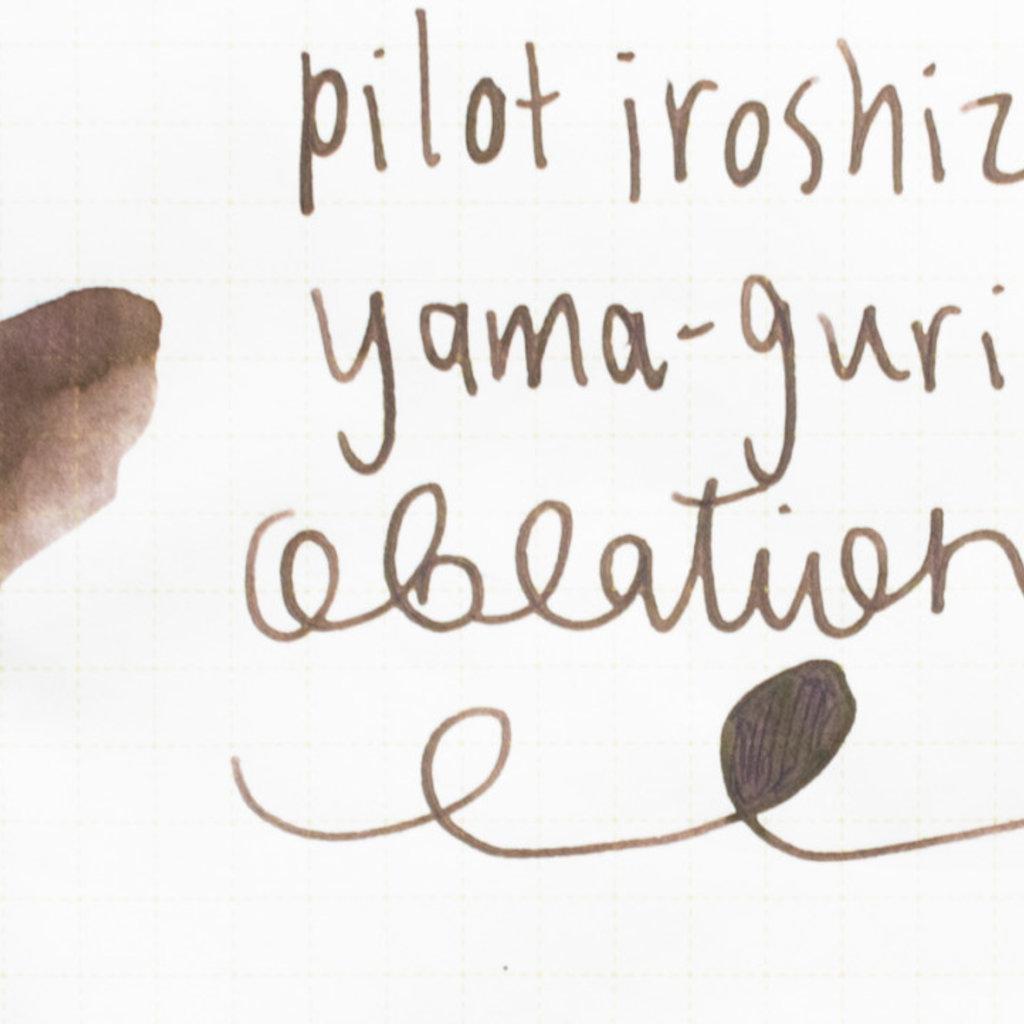 Pilot Iroshizuku Ink Yama-guri