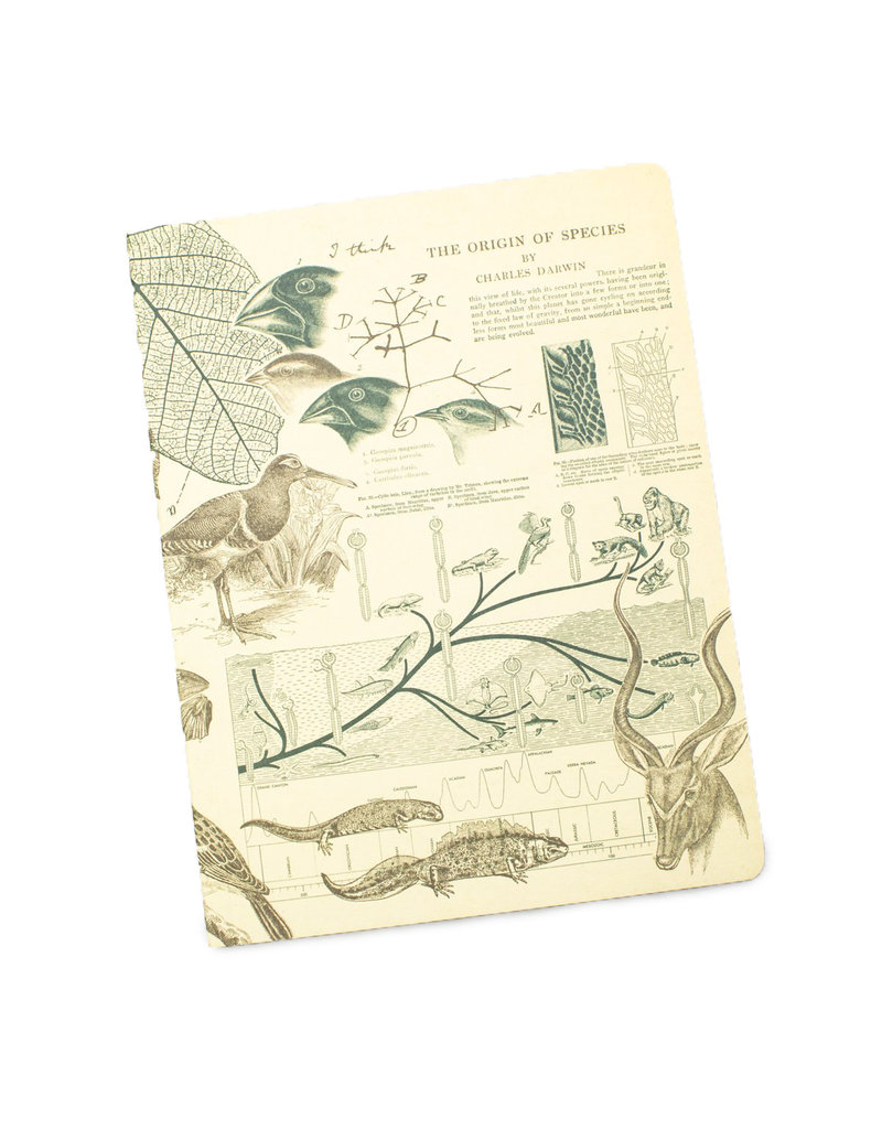 Evolution Softcover Lined Notebook