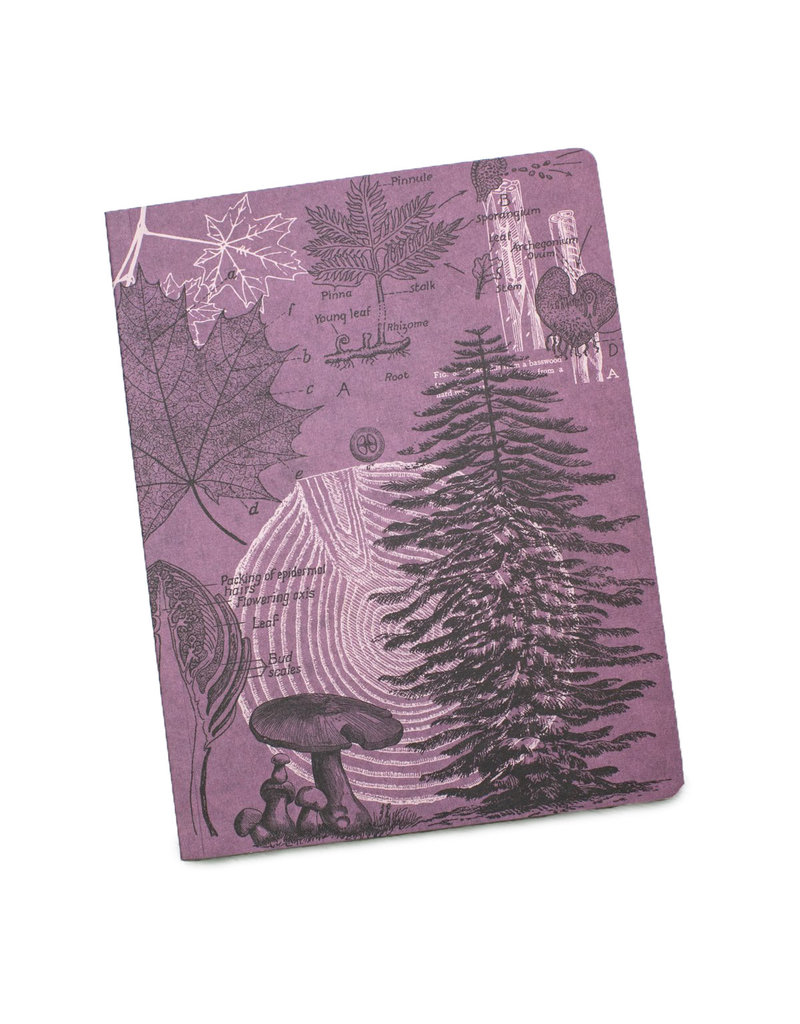 Forest at Dusk Softcover Lined Notebook
