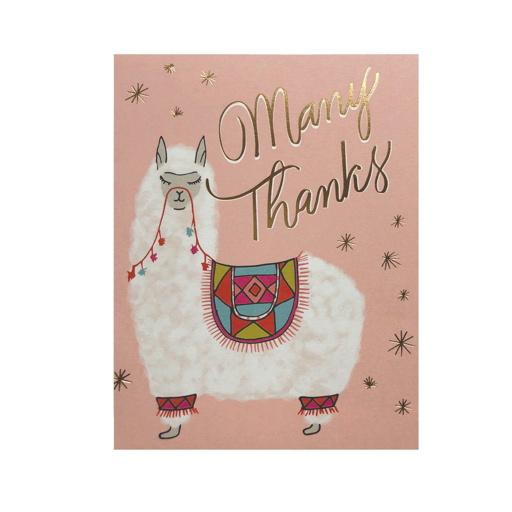 Alpaca Thanks