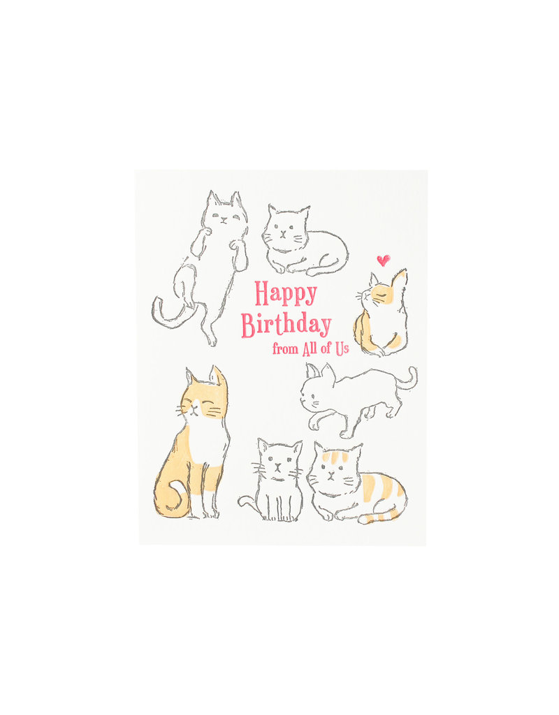Cats Happy Birthday From All Of Us