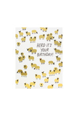 Hello Lucky Herd Its Your Birthday