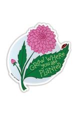 AC BC Design Grow Where You Are Planted Sticker