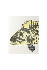 PushMePullYou Press Rockfish
