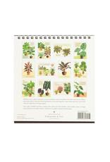 cavallini 2021 House Plants Desk Calendar