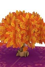 Lovepop Oak Tree Fall