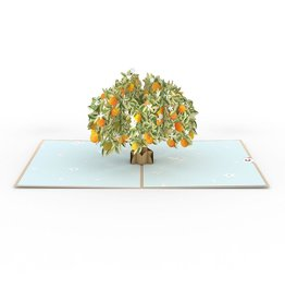 Lovepop Orange Blossom Tree