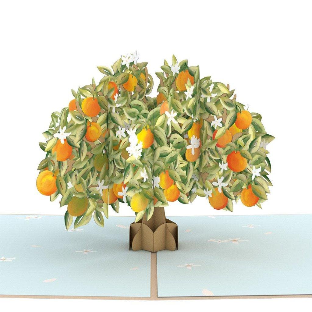 Lovepop Orange Blossom Tree Pop-Up Card