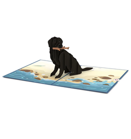 Lovepop Black Lab Pop-Up Card