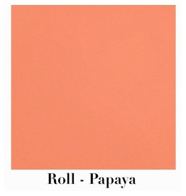 Waste Not Paper Papaya Continuous Roll Gift Wrap - 10'x30""