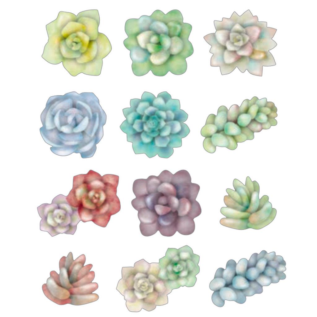 Bande Bande Washi Sticker Roll Succulent