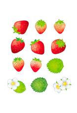 Bande Bande Washi Sticker Roll Strawberry