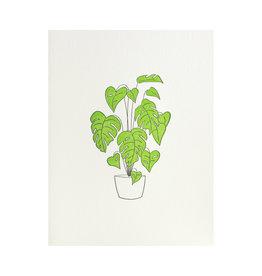 Green Bird Press Monstera Plant Letterpress Card