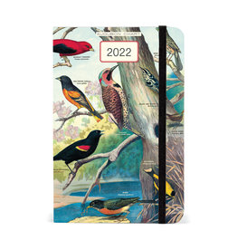 cavallini 2022 Audubon Birds Weekly Planner