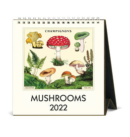 cavallini 2022 Desk Calendar Mushrooms