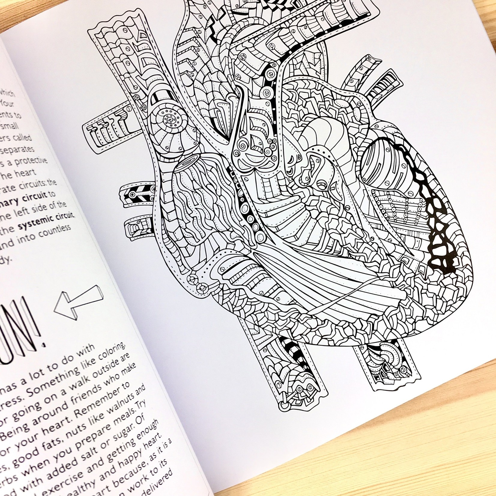 Artery Ink (LO) Show Me Your Guts Adult Coloring Book
